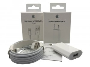 Caricabatteria Originale 5W USB + Cavo Lightning USB 2m per iPhone 5 A1429